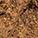 1 x Creion de ochi Waterproof Bronze  +   0,00lei