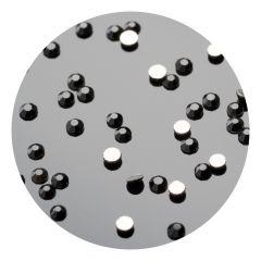 Cristale de unghii pinx. SS5 Black 50 buc