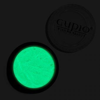 Pigment de unghii Night Glow Premium Verde