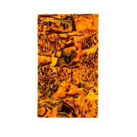 Scoici banda Gold