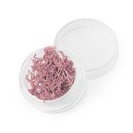 Alge roz