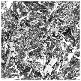 Pigment fulgi argintii