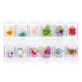 Flori naturale mix set 12
